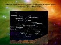 Зимовий трикутник складають найяскравіші зірки Оріона, Великого Пса і Малого Пса