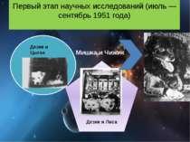 Перший етап наукових досліджень (липень - вересень 1951 року) Ведмедик і Чижи...