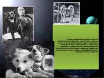У Китаї проводилися запуски собак на геофізичних ракетах в 60-х роках XX стол...