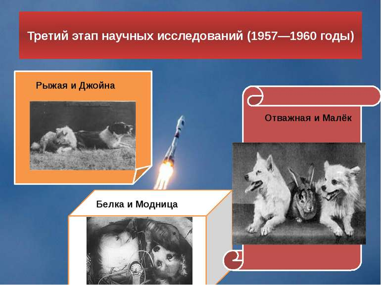 Третій етап наукових досліджень (1957-1960 роки) Руда і Джойна Білка і Модниц...