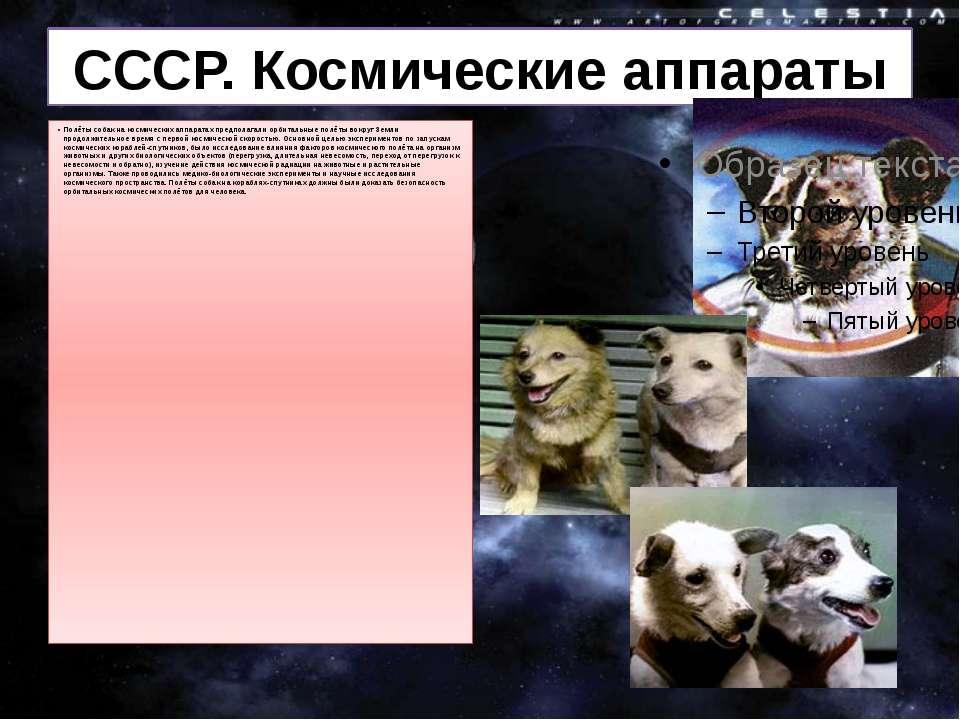 СРСР. Космічні апарати Польоти собак на космічних апаратах припускали орбітал...