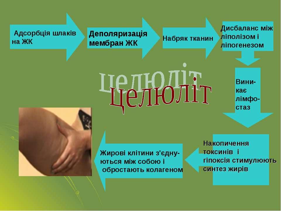 Адсорбція шлаків на ЖК Деполяризація мембран ЖК Набряк тканин Дисбаланс між л...