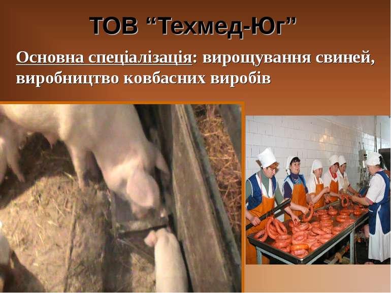 """ТОВ """"Техмед-Юг"""" Основна спеціалізація: вирощування свиней, виробництво ковбас..."""