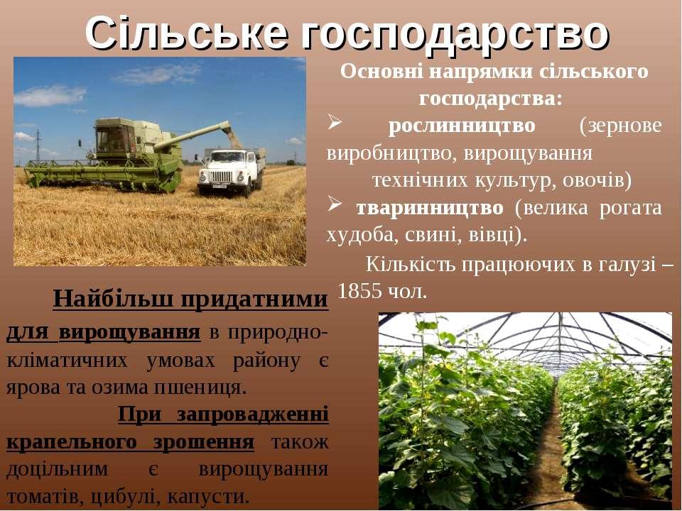 Сільське господарство Основні напрямки сільського господарства: рослинництво ...
