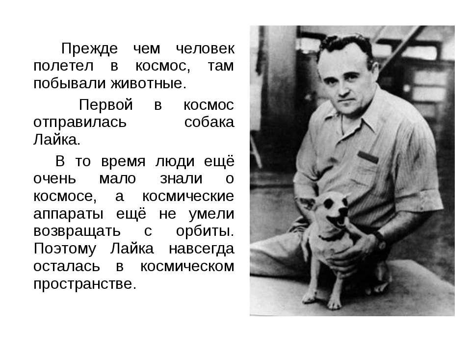 Перш ніж людина полетів у космос, там побували тварини. Першою в космос відпр...