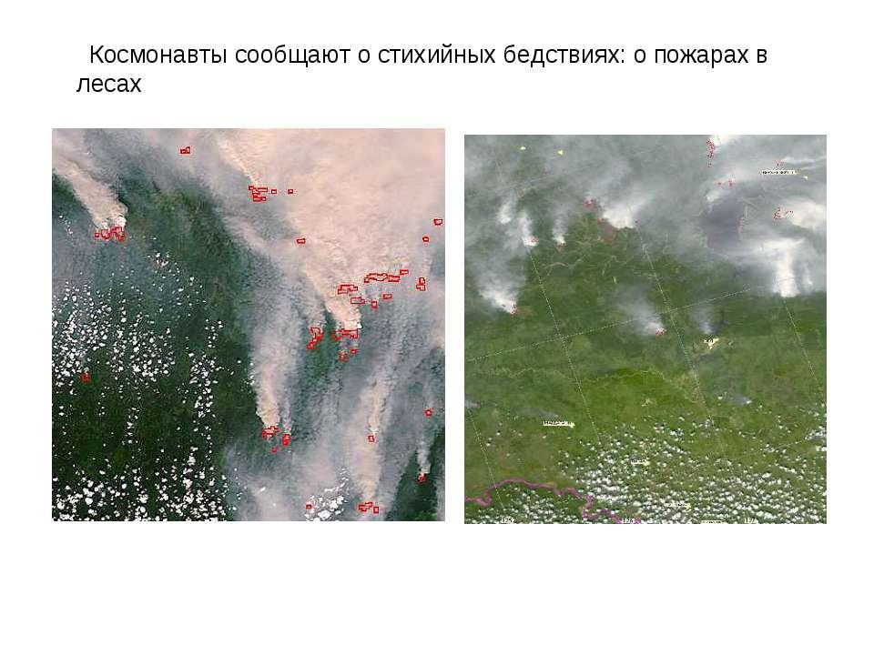 Космонавти повідомляють про стихійні лиха: про пожежі в лісах
