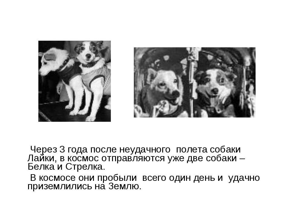 Через 3 роки після невдалого польоту собаки Лайки, в космос відправляються вж...