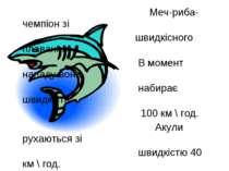 Меч-риба-чемпіон зі швидкісного плавання. В момент нападу вона набирає швидкі...