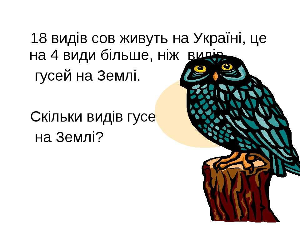 18 видів сов живуть на Україні, це на 4 види більше, ніж видів гусей на Землі...
