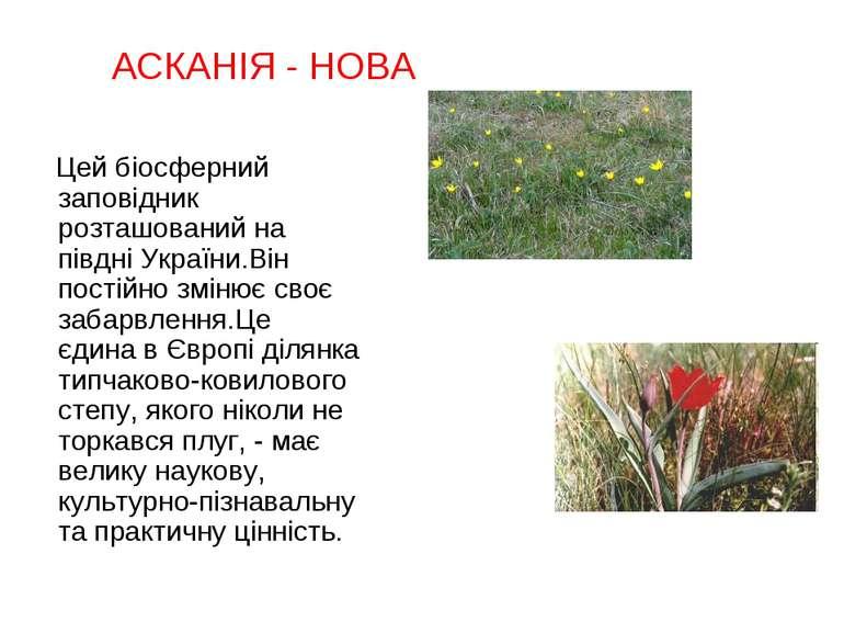 Цей біосферний заповідник розташований на півдні України.Він постійно змінює ...