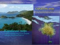 Моря овіяні легендами Атлантичного океану Карибське море (море на островах як...