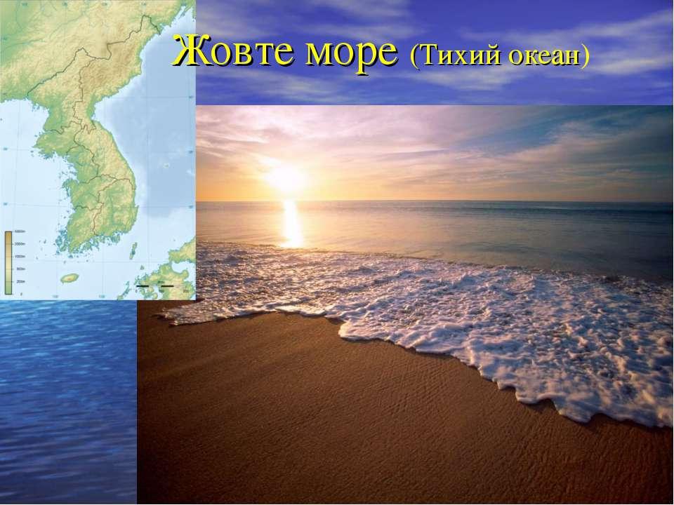 Жовте море (Тихий океан)