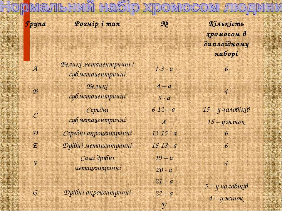 Група Розмір і тип № Кількість хромосом в диплоїдному наборі А Великі метацен...