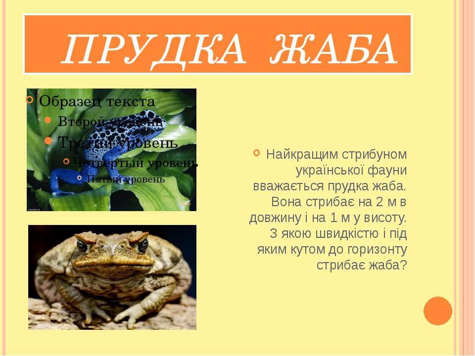 ПРУДКА ЖАБА Найкращим стрибуном української фауни вважається прудка жаба. Вон...