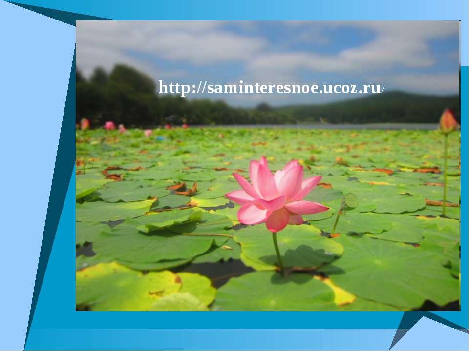 http://saminteresnoe.ucoz.ru/