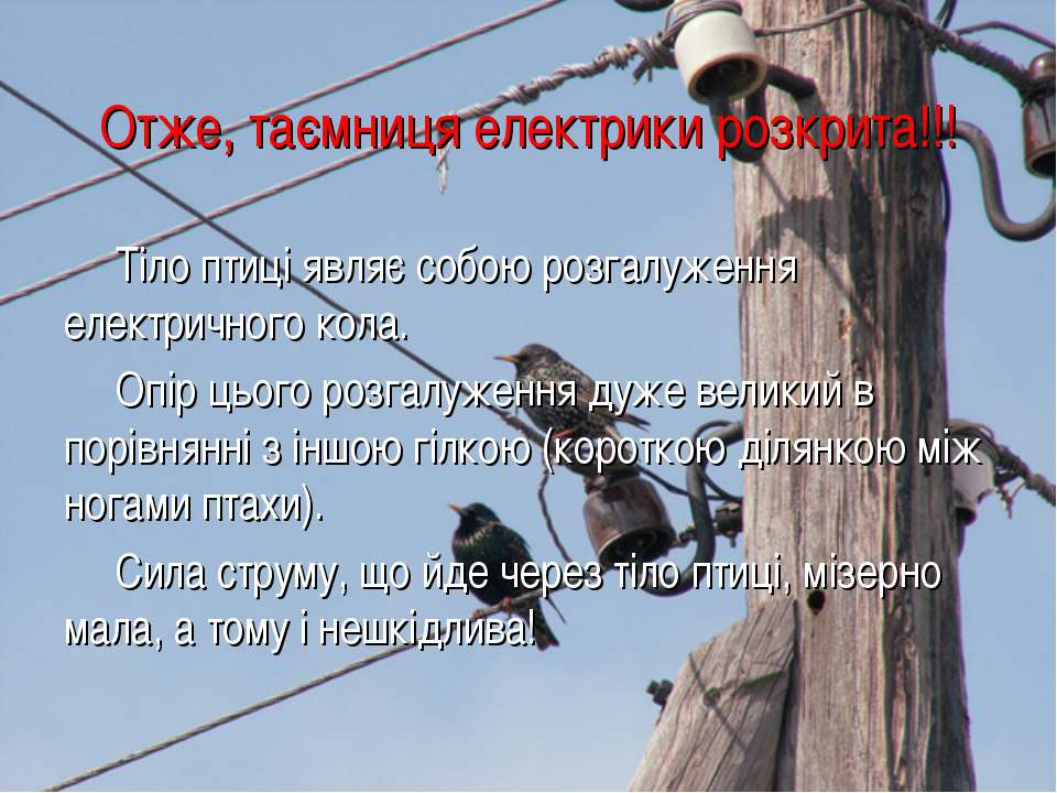 Отже, таємниця електрики розкрита!!! Тіло птиці являє собою розгалуження елек...