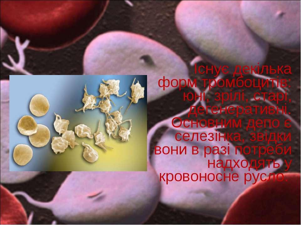Існує декілька форм тромбоцитів: юні, зрілі, старі, дегенеративні. Основним д...