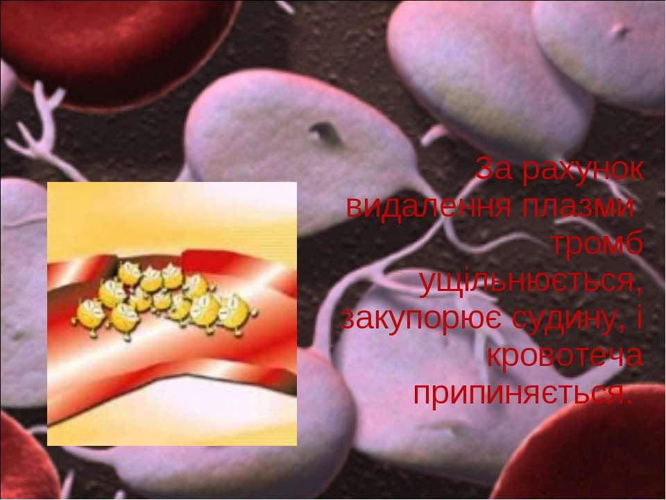 За рахунок видалення плазми тромб ущільнюється, закупорює судину, і кровотеча...