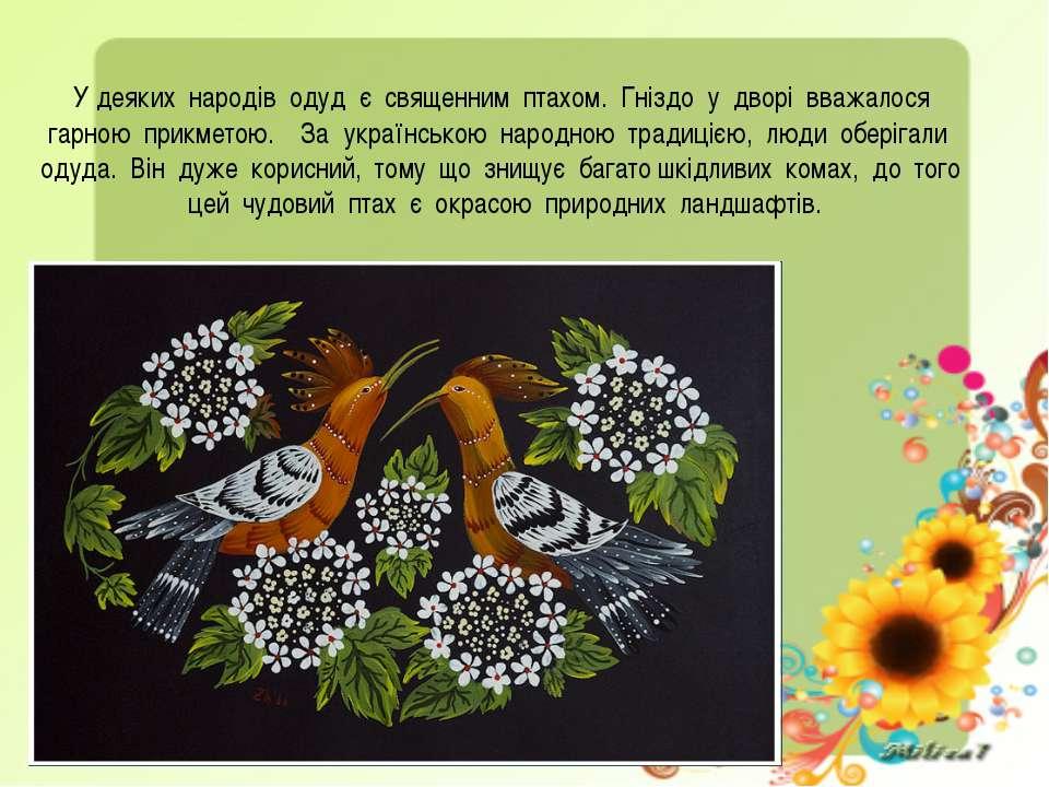 У деяких народів одуд є священним птахом. Гніздо у дворі вважалося гарною при...