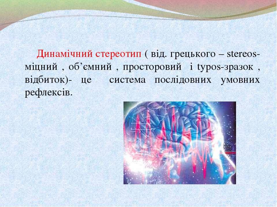 Динамічний стереотип ( від. грецького – stereos- міцний , об'ємний , просторо...