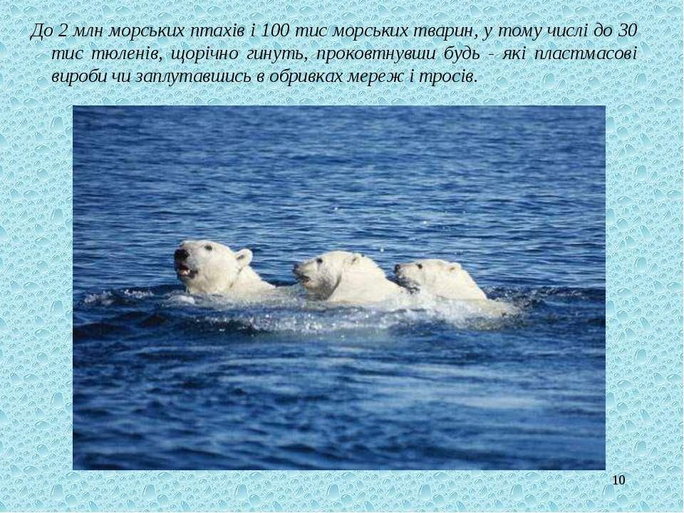 * До 2 млн морських птахів і 100 тис морських тварин, у тому числі до 30 тис ...