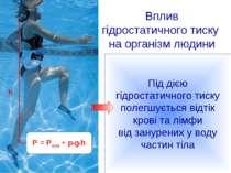 Вплив гідростатичного тиску на організм людини P = Pатм + p*g*h h Під дією гі...