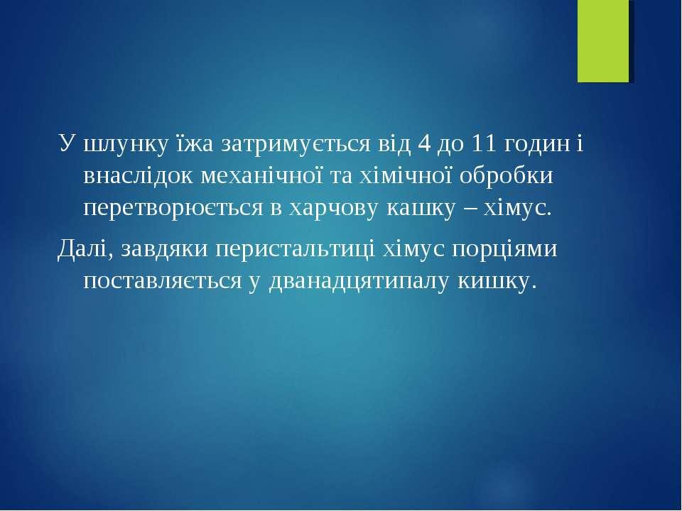 У шлунку їжа затримується від 4 до 11 годин і внаслідок механічної та хімічно...