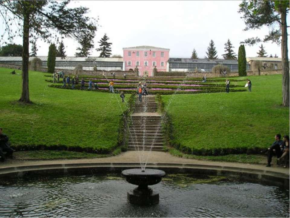 Національний дендропарк «Софіївка» Парк, розташований в північній частині міс...