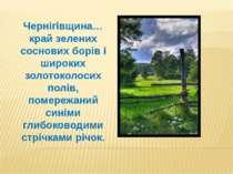 Чернігівщина… край зелених соснових борів і широких золотоколосих полів, поме...