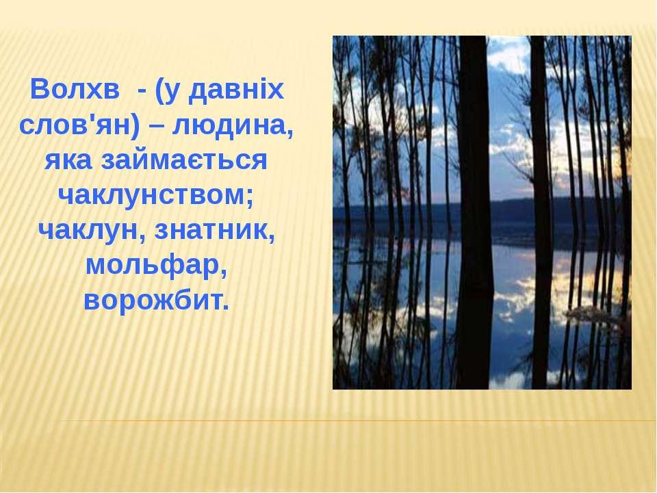Волхв - (у давніх слов'ян) – людина, яка займається чаклунством; чаклун, знат...