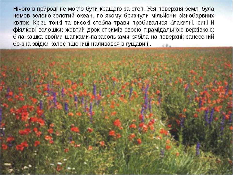Український степ Нічого в природі не могло бути кращого за степ. Уся поверхня...