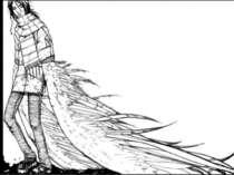 Поступово це протистояння альбатроса і натовпу людей, які його полонили, пере...