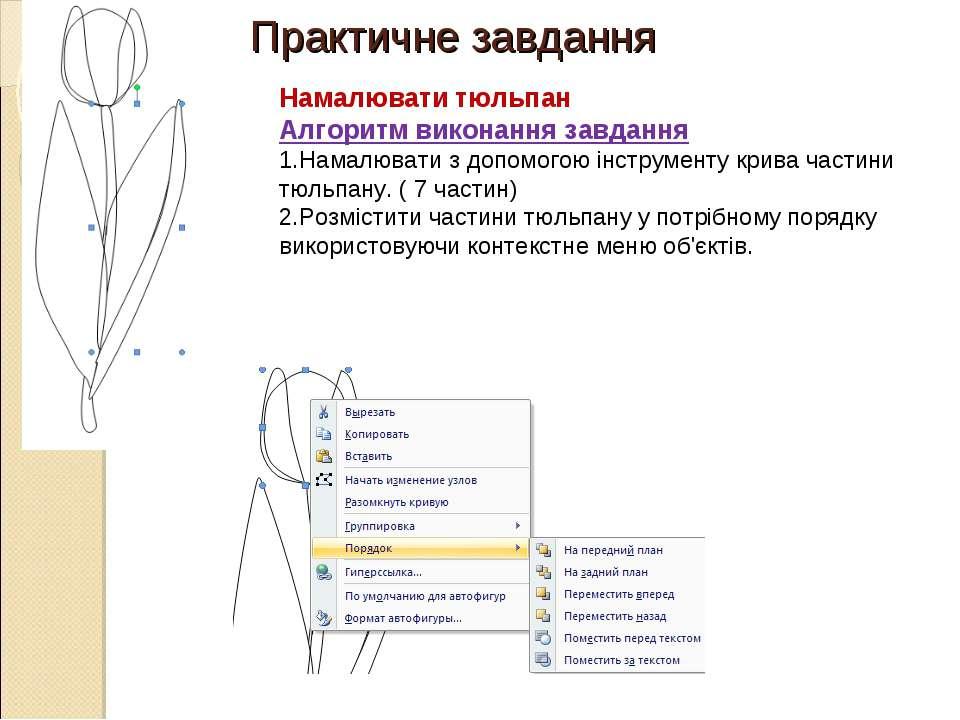 Практичне завдання Намалювати тюльпан Алгоритм виконання завдання Намалювати ...