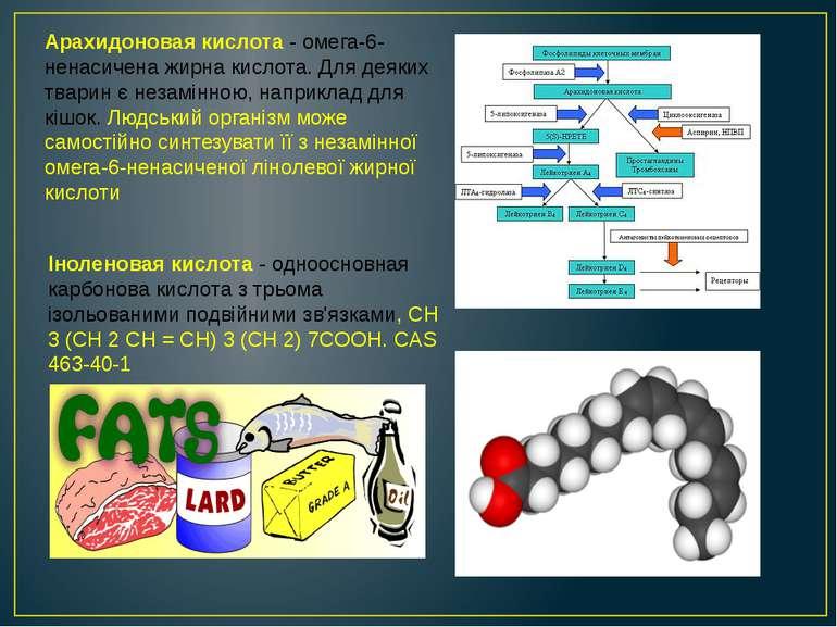 Арахидоновая кислота - омега-6-ненасичена жирна кислота. Для деяких тварин є ...