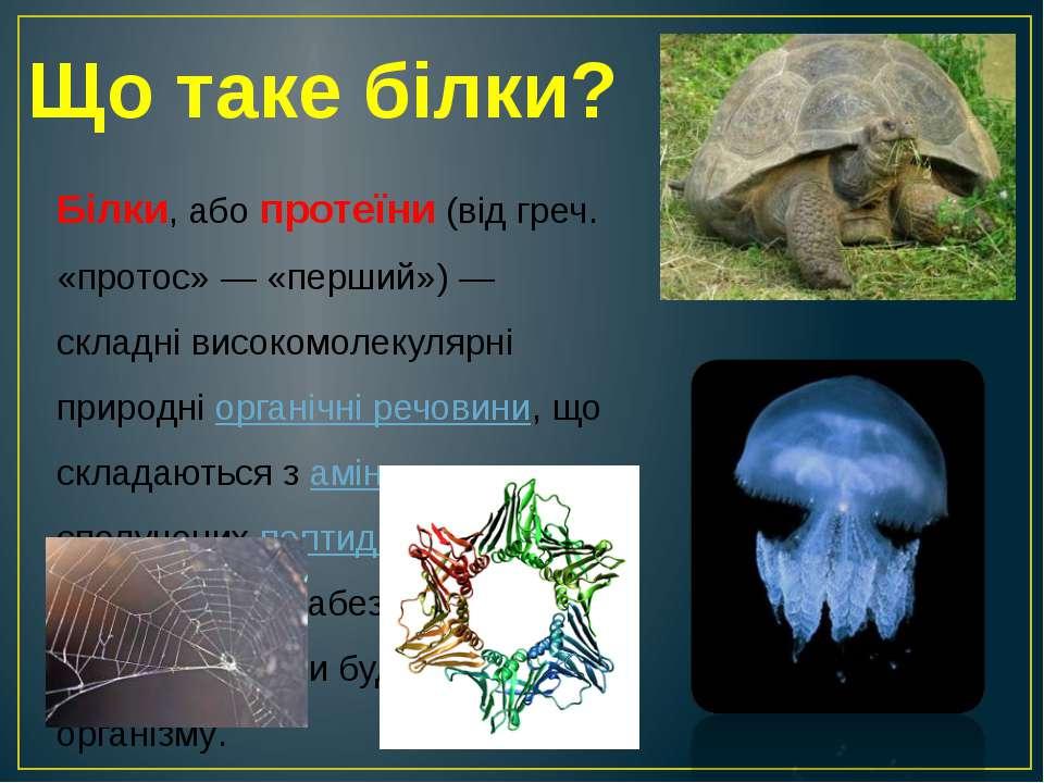 Що таке білки? Білки, або протеїни (від греч. «протос» — «перший») — складні ...