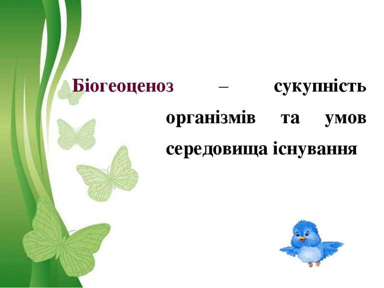 Біогеоценоз – сукупність організмів та умов середовища існування
