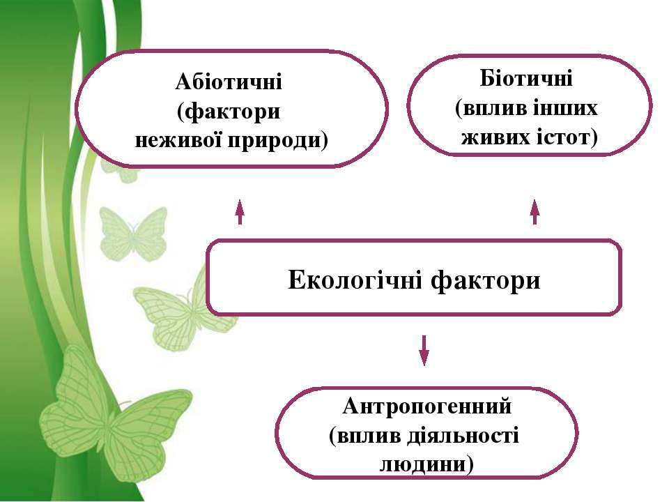 Екологічні фактори