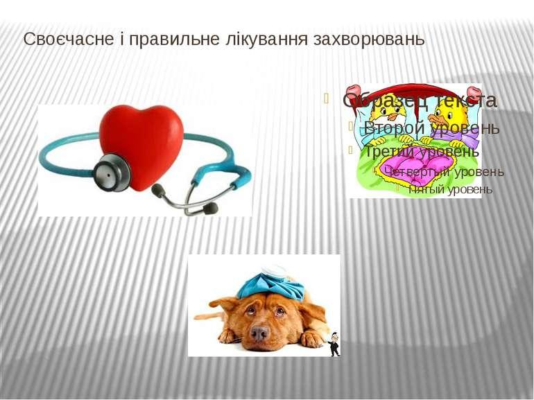 Своєчасне і правильне лікування захворювань