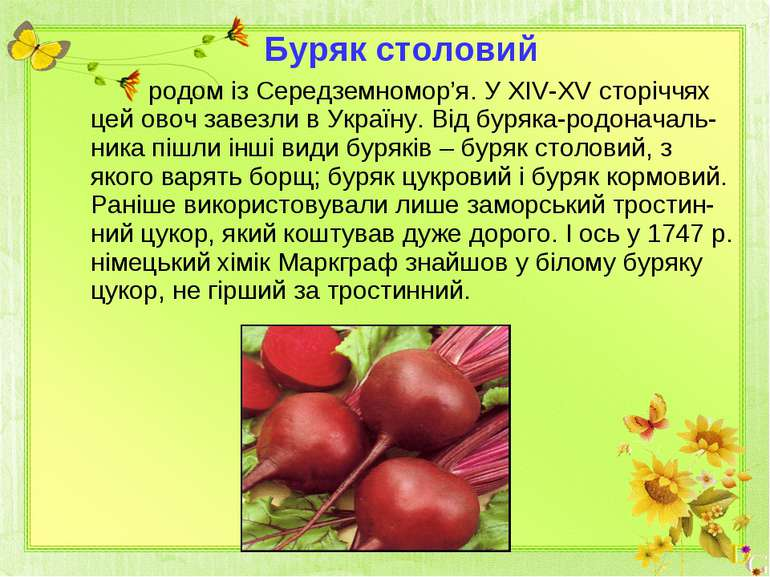 родом із Середземномор'я. У ХІV-ХV сторіччях цей овоч завезли в Україну. Від ...