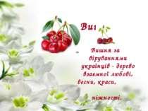 Вишня Вишняза віруваннями українців - дерево взаємної любові, весни, краси, ...