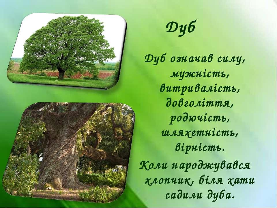 Дуб Дуб означав силу, мужність, витривалість, довголіття, родючість, шляхетні...