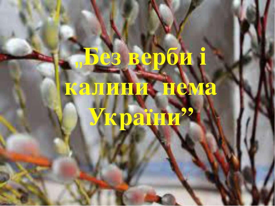 """лини нема України"" ""Без верби і калини нема України"""