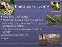Підготовка ґрунту Окресліть межі клумби. Скопайте землю й виберіть бур'яни. Н...