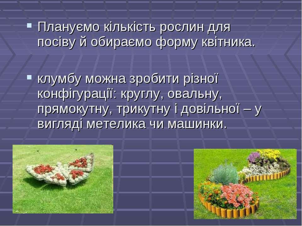 Плануємо кількість рослин для посіву й обираємо форму квітника. клумбу можна ...