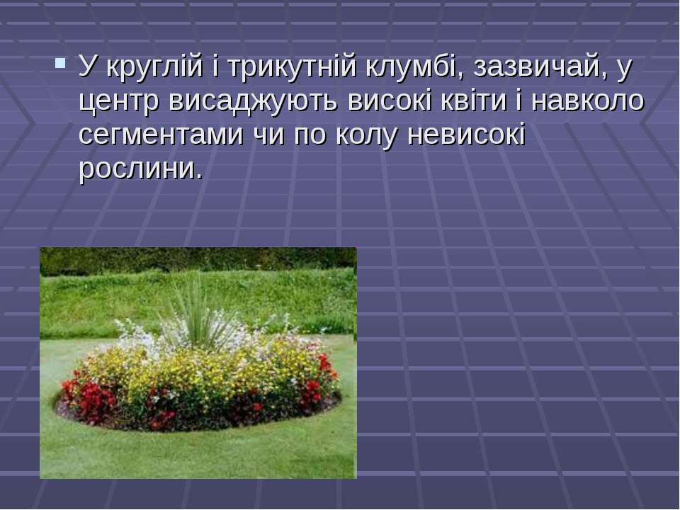 У круглій і трикутній клумбі, зазвичай, у центр висаджують високі квіти і нав...