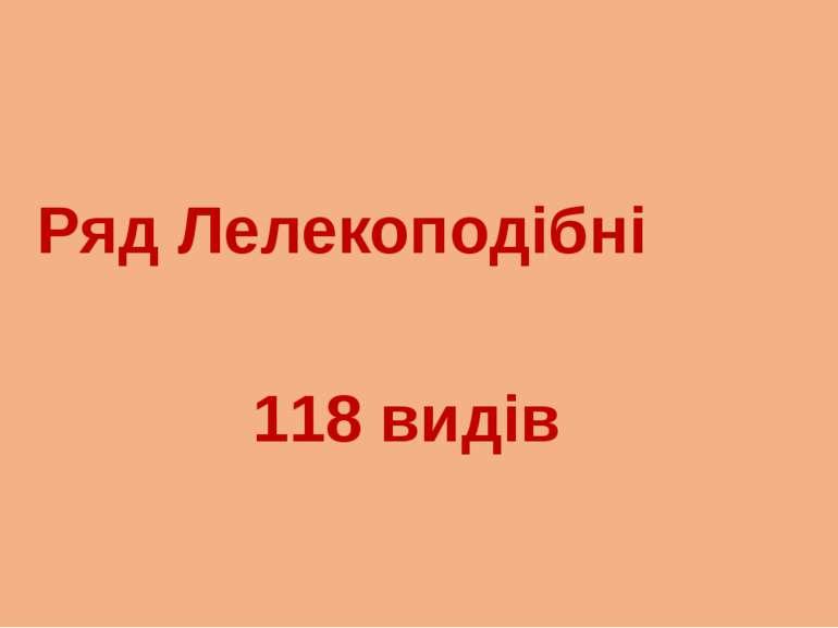Ряд Лелекоподібні 118 видів
