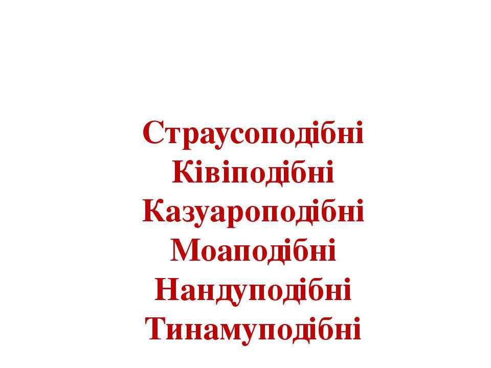 Надряд включає 6 сучасних рядів: Страусоподібні Ківіподібні Казуароподібні Мо...