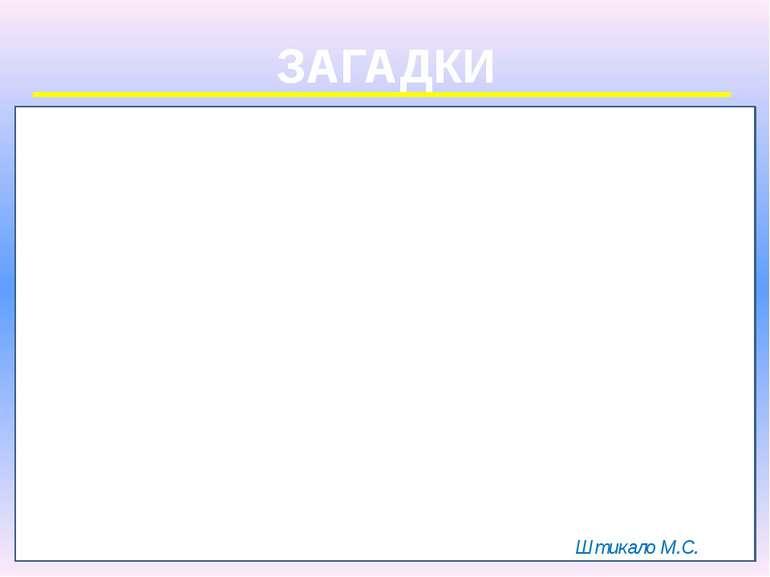 ЗАГАДКИ Штикало М.С.