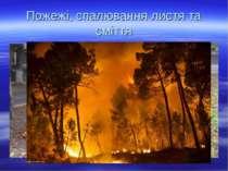 Пожежі, спалювання листя та сміття