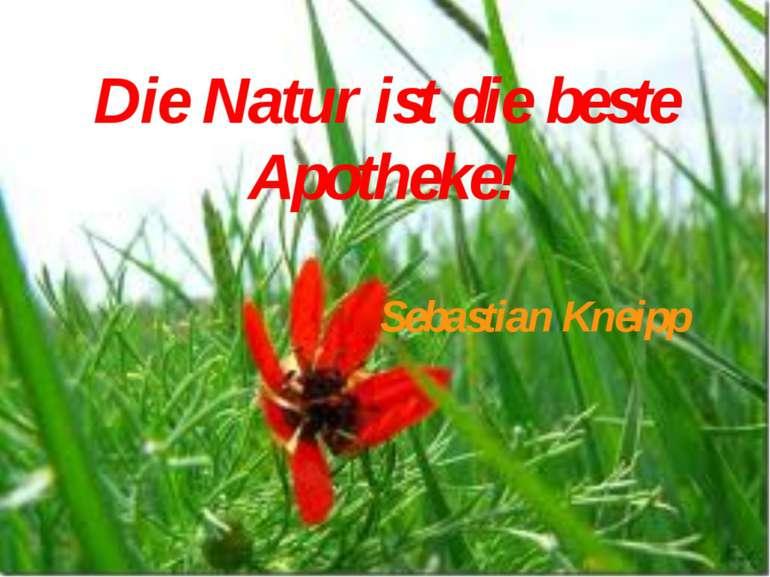 Die Natur ist die beste Apotheke! Sebastian Kneipp
